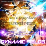EXPERAMENTALIST/HYPERION VISION - Dynamic Fields (Front Cover)