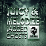 Jagged Ghosts