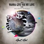 Wanna Give You My Love
