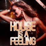 House Is A Feeling Vol 12