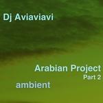 Arabian Project Part 2