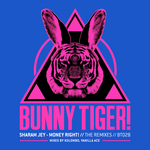 JEY, Sharam - Money Right! - The Remixes (Front Cover)