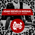 REEVES, Adam/MODAAL - We Gonna Get Down (Front Cover)