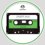 JUNIOR GEE - Jus Messin (Front Cover)