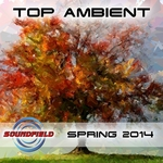 Top Ambient Spring 2014