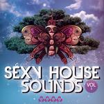 Sexy House Sounds Vol 3