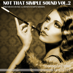 Not That Simple Sound Vol 2 - Premium Lounge & Downtempo Moods