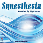 VARIOUS - Synesthesia (Front Cover)