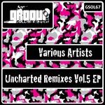 Uncharted Remixes Vol 5 EP