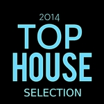 VARIOUS - Top House Selection 2014 (Front Cover)