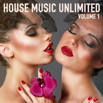VARIOUS - House Music Unlimited (From Dusk Till Dawn) (Front Cover)