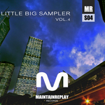 Little Big Sampler Vol 4
