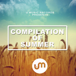 Compilation Of Summer