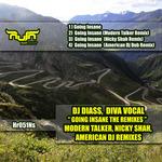 Going Insane: The Remixes
