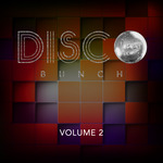 Disco Bunch Vol 2