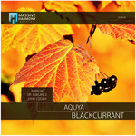 Blackcurrant (remixes)