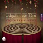 Labyrinth Der Tone Vol 8 - Deep & Tech House Music