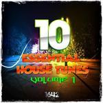 10 Essential House Tunes Vol 1
