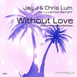 Without Love (remixes)
