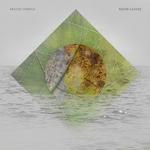 Razor Leaves (remixes)