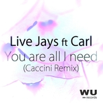 You Are All I Need (Caccini extended remix)