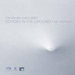 Echoes In The Ground