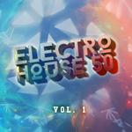 Electro House 50 Vol 1