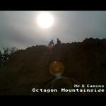 Octagon Mountainside