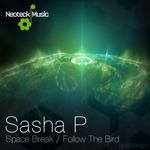 Space Break/Follow The Bird