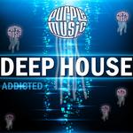 Deep House Addicted