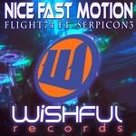 Nice Fast Motion