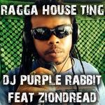 Ragga House Ting