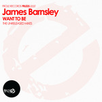 Want To Be (The Unreleased Mixes)