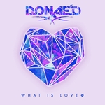 What Is Love (remixes)