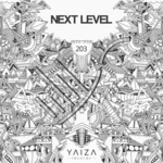 MOLL - Next Level (Front Cover)