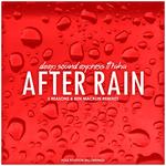 After Rain (remixes)