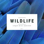 Wildlife: Unique Music Selection Vol 2