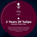 Two Years Of Tulipe