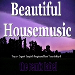 Beautiful Housemusic (Vibrant Deephouse Sounds Meets Christmas Proghouse Music Tunes Compilation In Key B Plus The Paduraru Megamix)