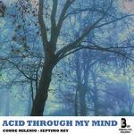 Acid Through My Mind