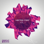 Perfekt Groove Meeting Point Vol 1