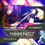 Hammonized (remixes)