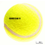 Grand Slam Vol 16