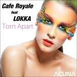 Torn Apart (mixes)