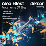 Fragments Of Bliss