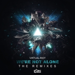 Were Not Alone (the remixes)