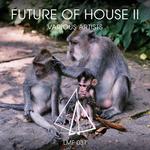 Future Of House II