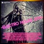 Electro House 2014 (deluxe version)