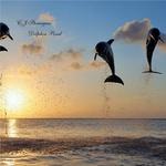 Dolphin Pond