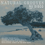 Natural Grooves The Finest Selection Of Nu Disco Vol 1